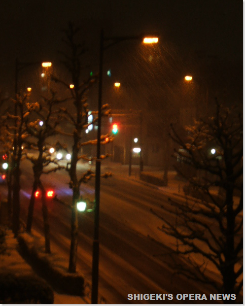 東京の雪2010